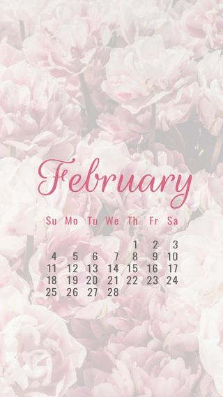 Обои на телефон календарь, цветы, розы, календари, rosy february, february