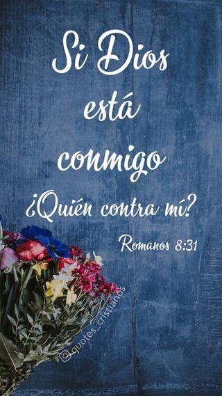 Обои на телефон библия, цитата, цветы, фразы, исус, бог, dios conmigo, biblia