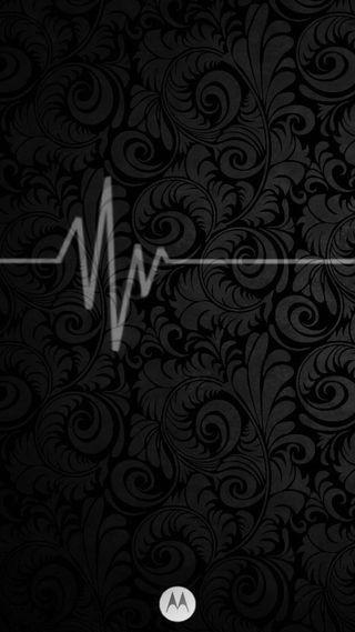 Обои на телефон черные, цветы, цветок, моторола, fondo, motorola