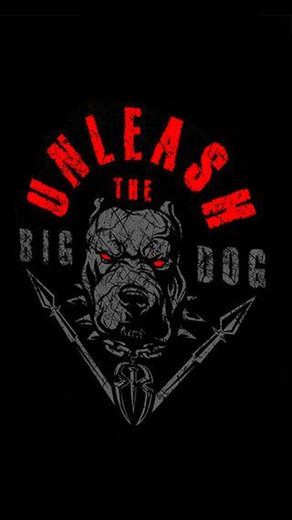 Обои на телефон nxt, roman reigns, smackdown, wwe, unleash the big dog, логотипы, собаки, роман