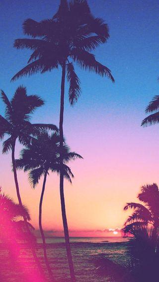 Обои на телефон пляж, пальмы, закат