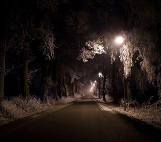 Обои на телефон ночь, природа, дорога, hd, fogy night