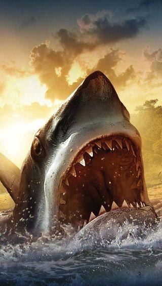Обои на телефон акула, океан, creature