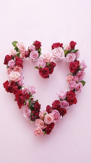 Обои на телефон розы, сердце, любовь, love