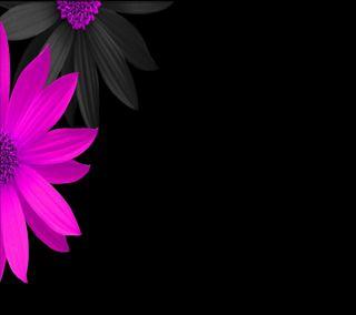 Обои на телефон лепестки, яркие, цветы, розовые, приятные, природа, новый, абстрактные