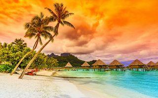 Обои на телефон фотографии, рай, путешествие, приятные, пляж, пейзаж, пальмы, море, дерево