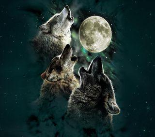 Обои на телефон волк