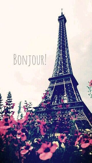 Обои на телефон франция, цветы, париж, башня, bonjour