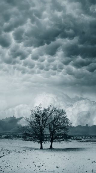 Обои на телефон шторм, ты, природа, пейзаж, облака, деревья, айфон, you and i, iphone