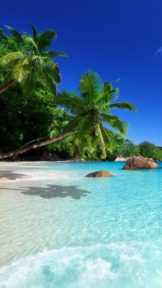 Обои на телефон тропические, синие, пляж, острова, море, день, princessha