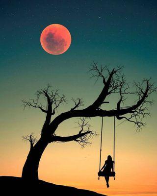 Обои на телефон силуэт, одиночество, одинокий, луна, кровь, дерево, девушки, ветка, swing, nightfall, lonely branch, blood moon