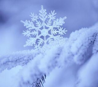 Обои на телефон снежные, снежинки, снег, зима, snowy filigree