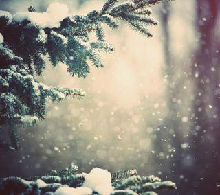 Обои на телефон дерево, снег, рождество, небо, листья, зима, деревья, winter hd, snowfall