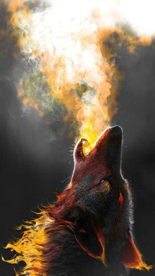 Обои на телефон огонь, природа, животные, другие, волк, абстрактные