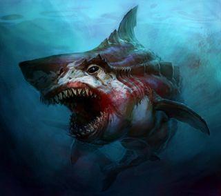 Обои на телефон опасные, акула, море, животные