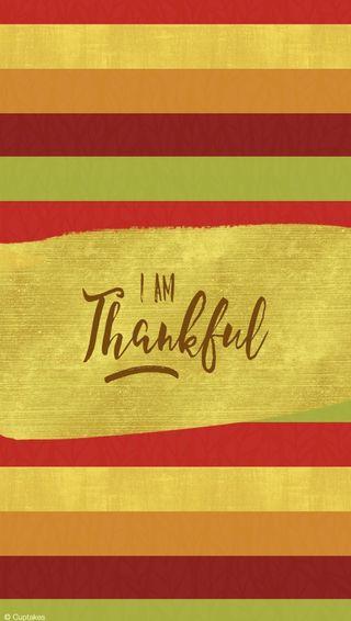 Обои на телефон благодарение, i am thankful