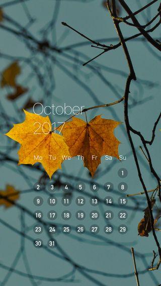 Обои на телефон oct, october tree cal, дерево, календарь, октябрь, продуктивность
