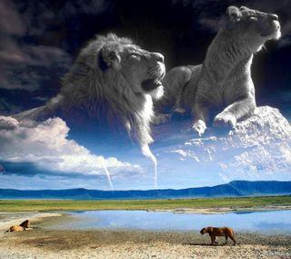 Обои на телефон коллаж, облака, небо, лев