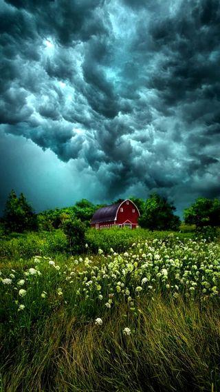 Обои на телефон облачно, цветы, синие, поле, облака, небо, lodge, cloudy sky