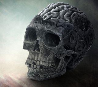 Обои на телефон скелет, череп, мозг, абстрактные, brainy skull