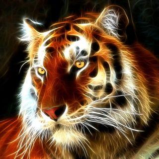 Обои на телефон тигр, фрактал