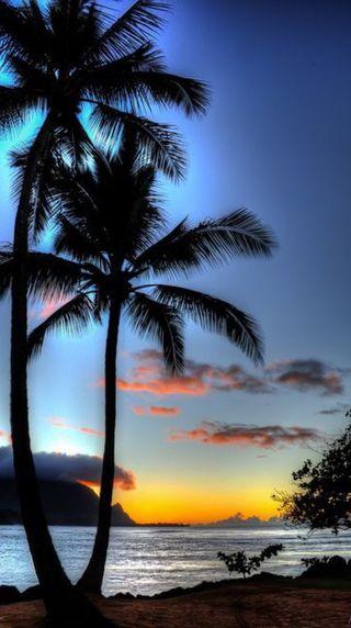 Обои на телефон пляж, вечер, on the beach, evening on the beach