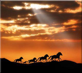Обои на телефон анимационные, свет, прекрасные, оранжевые, облака, небо, лошадь, закат, nexus, hd, 3д, 3d sunset horse, 3d