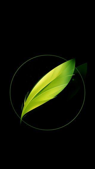 Обои на телефон перо, черные, зеленые, nubia  green feather
