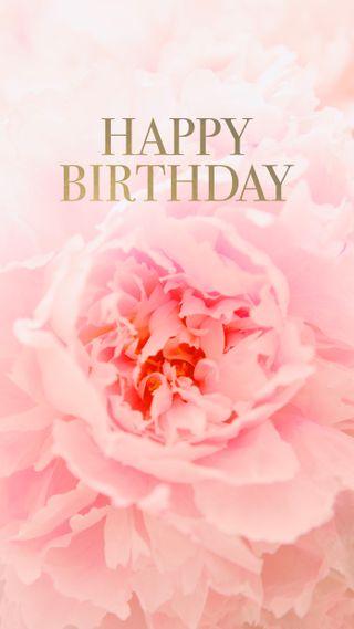 Обои на телефон bday, greeting, happy, hd, love, peony, любовь, розовые, цветы, счастливые, симпатичные, текст, день рождения, празднование, карты, типография, праздновать, тип