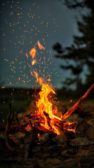 Обои на телефон hd, природа, огонь, лес, дерево, пламя, поход