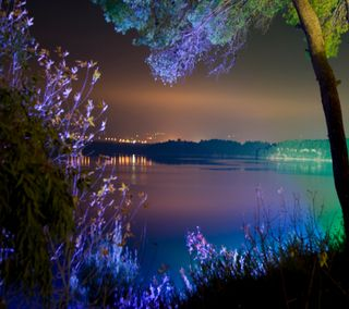 Обои на телефон вечер, светящиеся, пейзаж, огни, ночь, дерево, вода, illuminate, glowing night