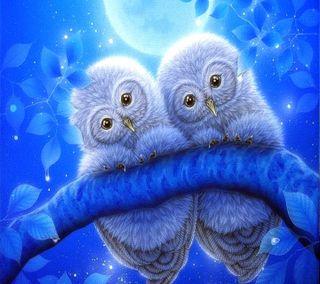 Обои на телефон сова, owls  wallpaper