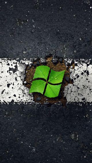 Обои на телефон компьютер, зеленые