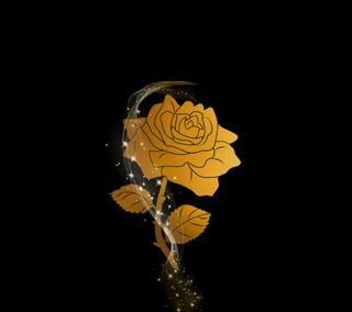 Обои на телефон черные, цветы, стиль, розы, любовь, крутые, девушки, roses style 01, love, dr