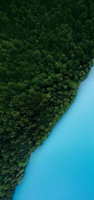 Обои на телефон река, лес, oppo