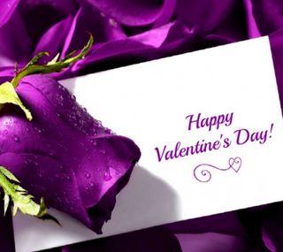 Обои на телефон цветы, фиолетовые, счастливые, роса, розы, любовь, день, валентинки, 2160x1920px, purple rose, love