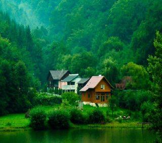 Обои на телефон замечательный, дом, дерево