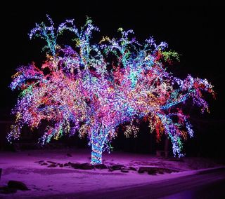 Обои на телефон праздник, огни, дерево, рождество, ночь
