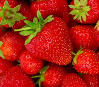 Обои на телефон ягоды, свежие, клубника