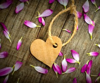 Обои на телефон специальные, сердце, любовь, love
