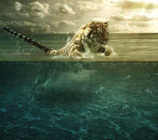 Обои на телефон тигр, море, pi