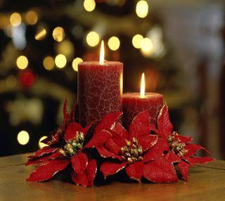 Обои на телефон праздник, цветы, свечи, рождество