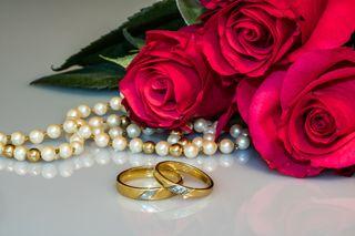 Обои на телефон фан, замечательный, розы, новый, мир, world rose fan, wonderful rose, hd