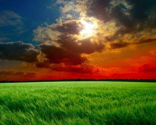 Обои на телефон dark nature, landscape grass, природа, темные, пейзаж, трава, восход, луг, облачно