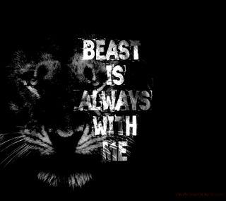 Обои на телефон я, топ, мотивация, лев, индия, зверь, животные, англия, us, top wallpaper