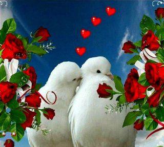Обои на телефон любовь, love---------, love, ---------