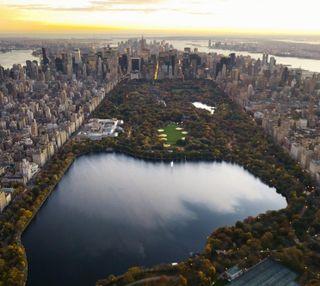 Обои на телефон парк, нью йорк, новый, манхэттен, central park